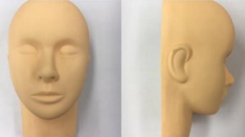 シングルラッシュ部門、創作アート部門 まつ毛が付いていない半顔タイプのウィッグ見本